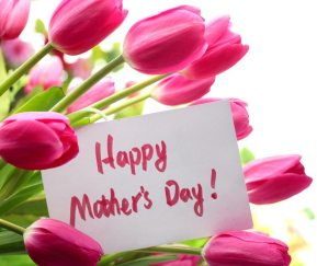 Pink tulips for mother's day